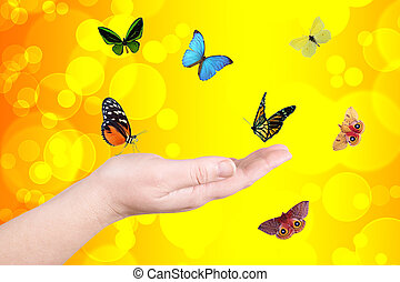 Yellow circles and butterfly - Hand and butterfly on a...