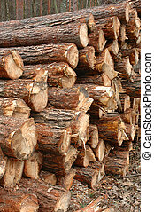 Timber in storage