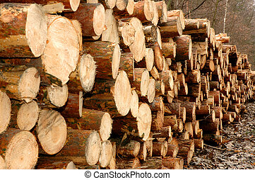 Lumber -  Piles of wood by a lumber mill