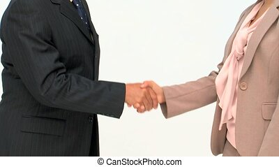 Two business people shaking hands isolated on a white...