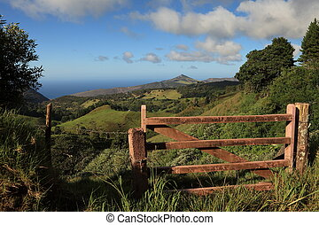 Lush green St Helena Island - Lush tropical interior...