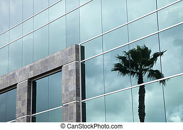 Dramatic Reflective Corporate Building with Clouds and Palm...