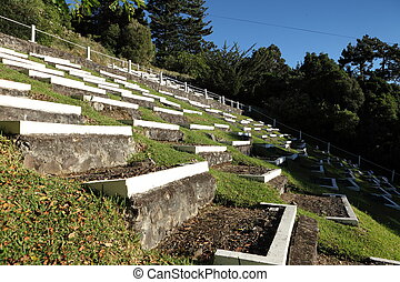 South African Boer war graves - Over six thousand prisoners...