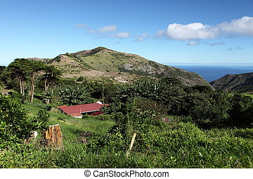 Thompsons Wood on St Helena Island - A country cottage...