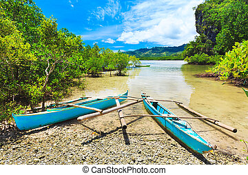 Philippine boat - Traditional Philippine boat in the...