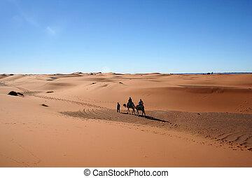 Desert - Camel Caravan on Africa s desert