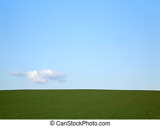 Grassy Field and Sky - simple grassy field with hedge and...