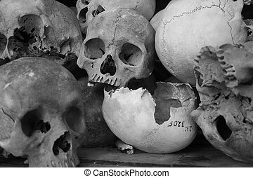 Skulls at the Killing Fields - Remains of the victims from...