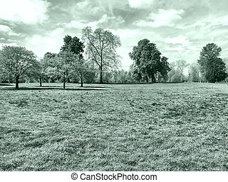 Hyde Park, London - Hyde Park - Kensington Gardens in...