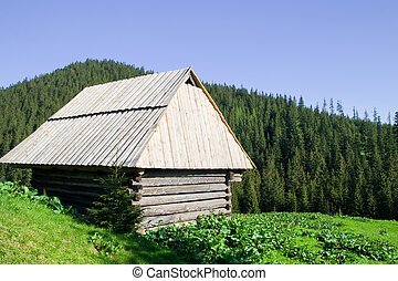 Wooden Hut in the Tatra Mountains
