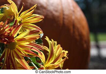 Fall Festival Scene - pumpkin and flowers at fall festival