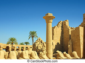 column and statues of sphinx in karnak temple