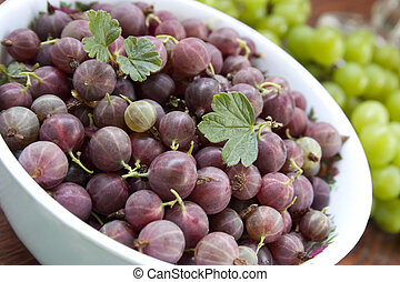 red gooseberries in a white cup closeup