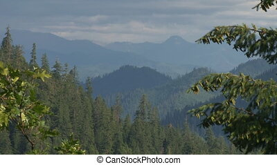 Smoky Forest Hills - zoom out - Deep Siskiyou National...