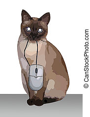Cat with a mouse - There is a siamese cat with a computer...