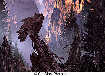 Great Horned Owl - A Great Horned Owl perched on a pine tree...