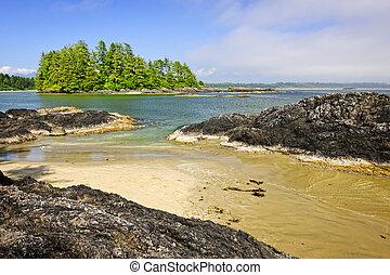 costa, pacífico, oceânicos, Vancouver, ilha,...