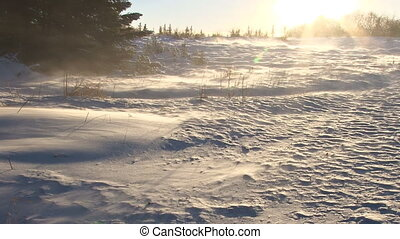 Sun Flare Snow Field Blast - Harsh wind blows powdery snow...