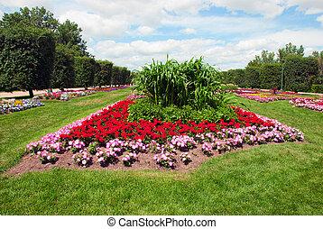 Flowerbed - Blooming flowers in a city park flowerbed