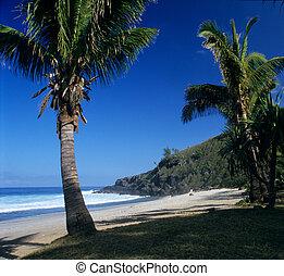 Grande Anse beach, La Reunion island