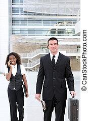 mulher, colega trabalho, negócio, homem