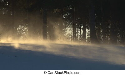 Slanting sunlight blasting snow - Sunlight slanting through...