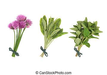 cebolinhas, sábio, orégano, ervas