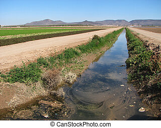 dirty irrigation ditch - polluted irrigation ditch in the...