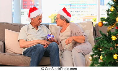 Senior couple on Christmas day