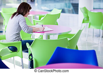 pfemale college student doing homework/assignment on...