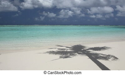 Beautiful Beach of pacific island