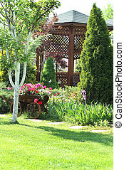 Summer garden  - Beautiful summer garden in the sunny day