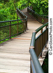 Empty elevated wooden walkway in forest