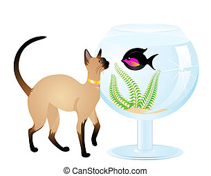 The cat plays with a small fish in an aquarium a white...