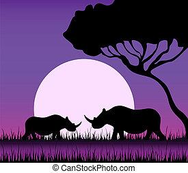 Silhouettes of a rhinoceros