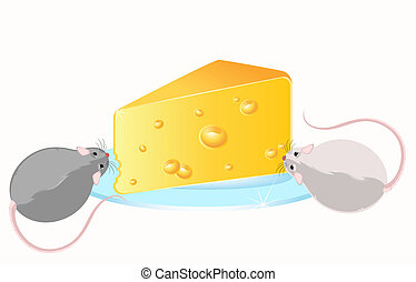 Funny rat and cheese