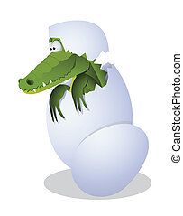 Crocodile and egg - Funny crocodile hatched from eggs
