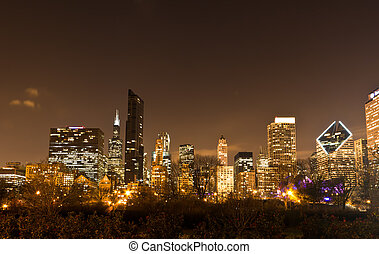 The downtown Chicago - Downtown Chicago. The amazing night...