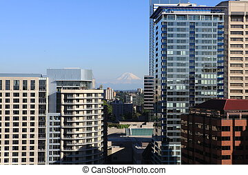 Seattle downtown and Mt.Rainier