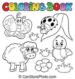 coloração, livro, primavera, animais