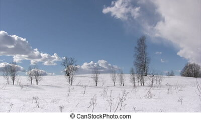 Winter landscape - Winter snow landscape with trees, sky and...