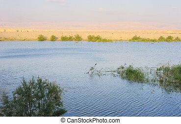 Reservoir in the Arava desert in the first rays of the sun