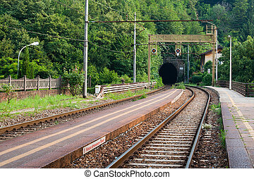 railway tunnel - Empty railroad tunnel in the rural...