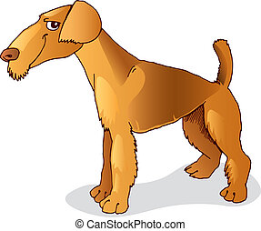 Airedale terrier dog - Illustration of purebred airedale...