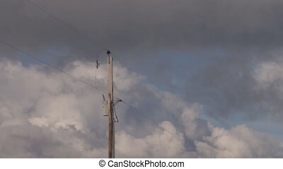 Power Pole Storm Time Lapse - Signifies looming energy...