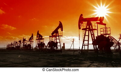 row of many working oil pumps silhouette against sun