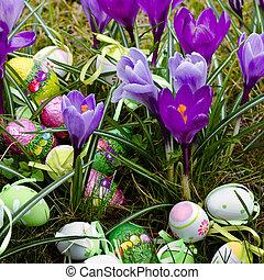 Easter eggs in grass between spring crocus