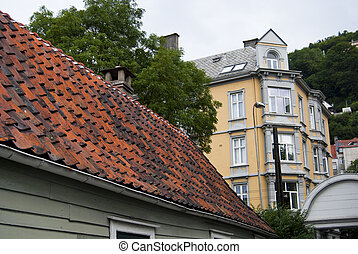 tile roof  - Norwegian house with tile roof