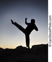 karate, luchador, silueta, joven, hombre, ejercicio, lucha,...