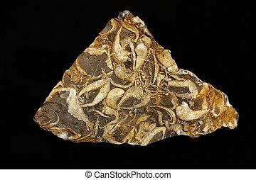 geología, mineral